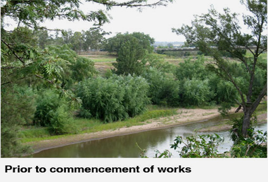 Hunter River Rehabilitation Before